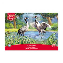 Piešimo albumas EXOTIC BIRDS, ErichKrause, A4, 20 lapų, 120gsm