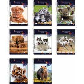 Bloknotas ANIMAL WORLD, EconoMix, A6, 48 lapai, 60gsm, plastikinis viršelis, su spirale šone