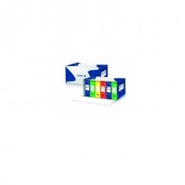 Archyvinė dėžė 540x340x300 mm., VAUPE